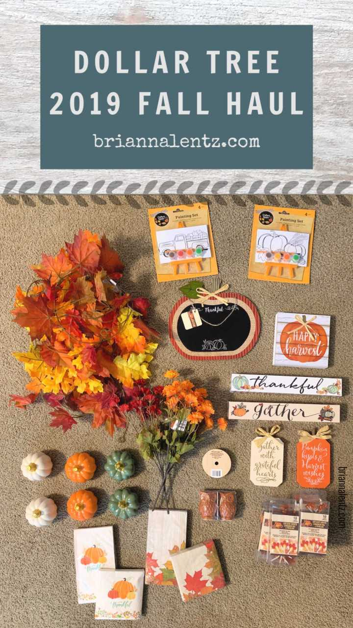 Dollar Tree 2019 Fall Haul