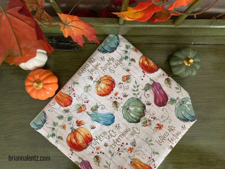 Harvest Zipper Pouch and Project Bag photo of bag