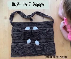 1st eggs IMG 4