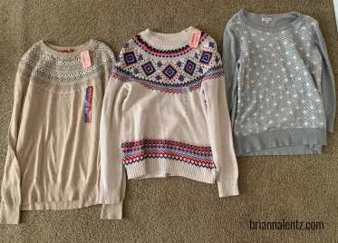 Goodwill Clothes Haul IMG 3