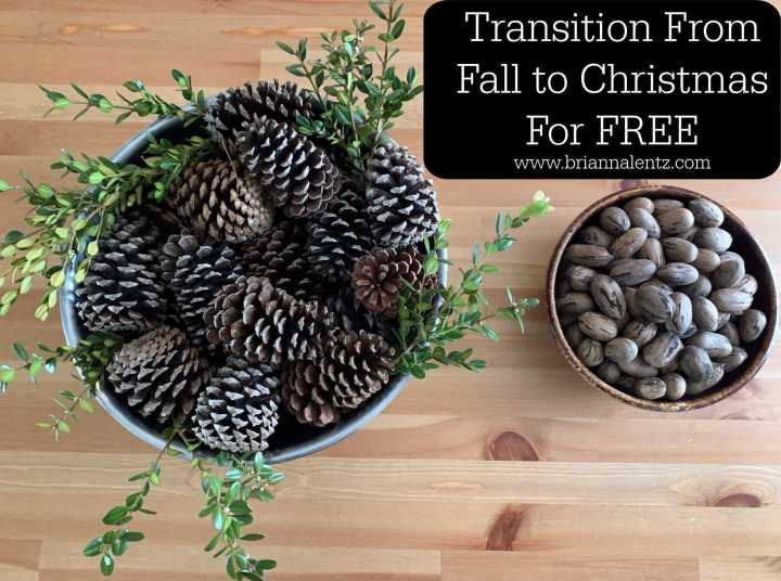 Transition From Fall to Christmas For Free! With Live Greenery, Nature, Nuts, Items from Your Own Front Yard